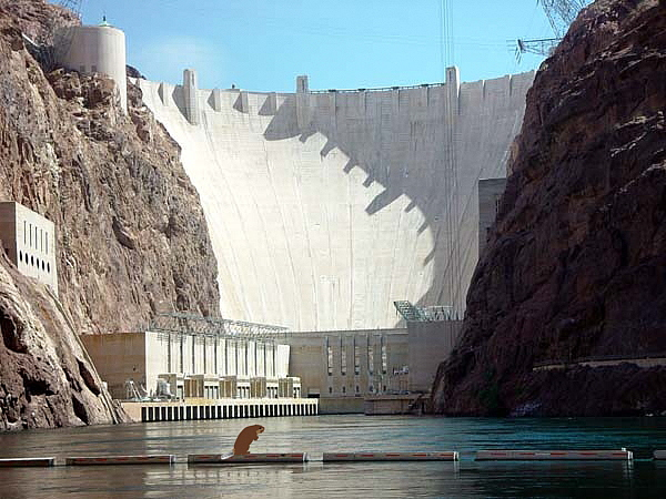The Genetic Landscape of a Cell HooverDam